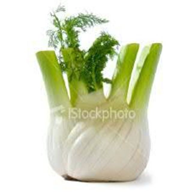 Picture of Fennel per bunch (Baby)