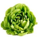 Picture of Lettuce Salanova each