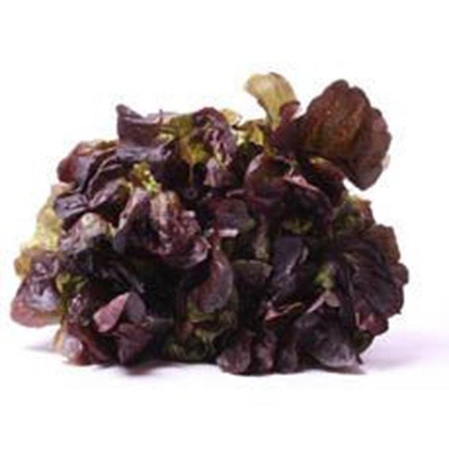 Picture of Lettuce Butter/Oak each, Red