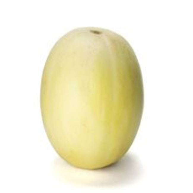 Picture of Honey Dew Melon per whole
