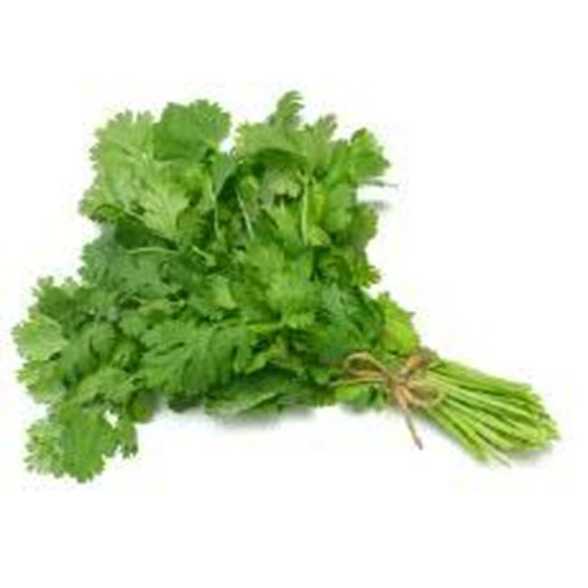 Picture of Coriander per bunch