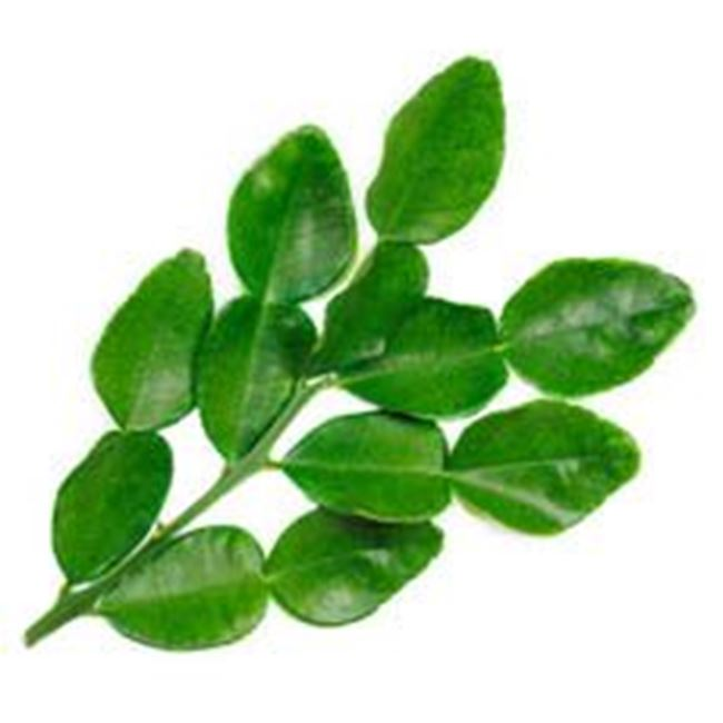Picture of Kaffir Lime Leaves per 20gm