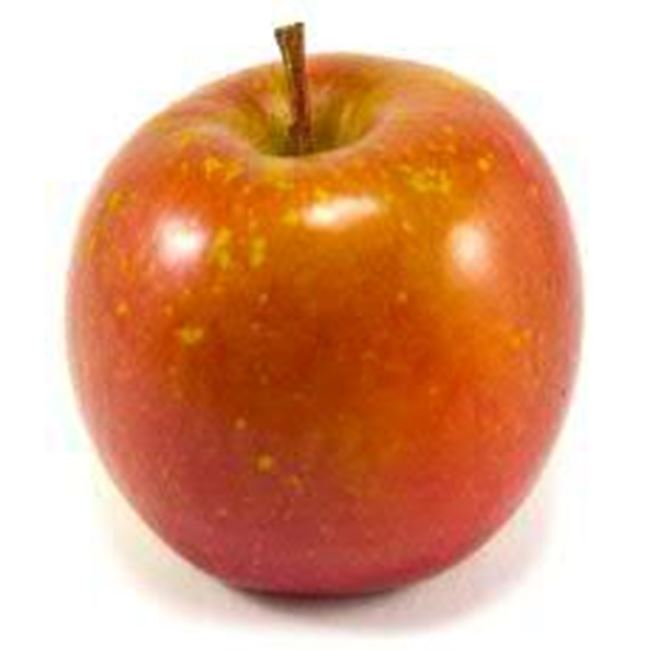 Picture of Apple Fuji Organic each