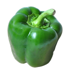 Picture of Capsicum Green each